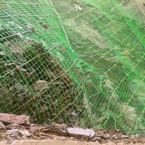 Green PVC coated wire rope is covering the mountain.