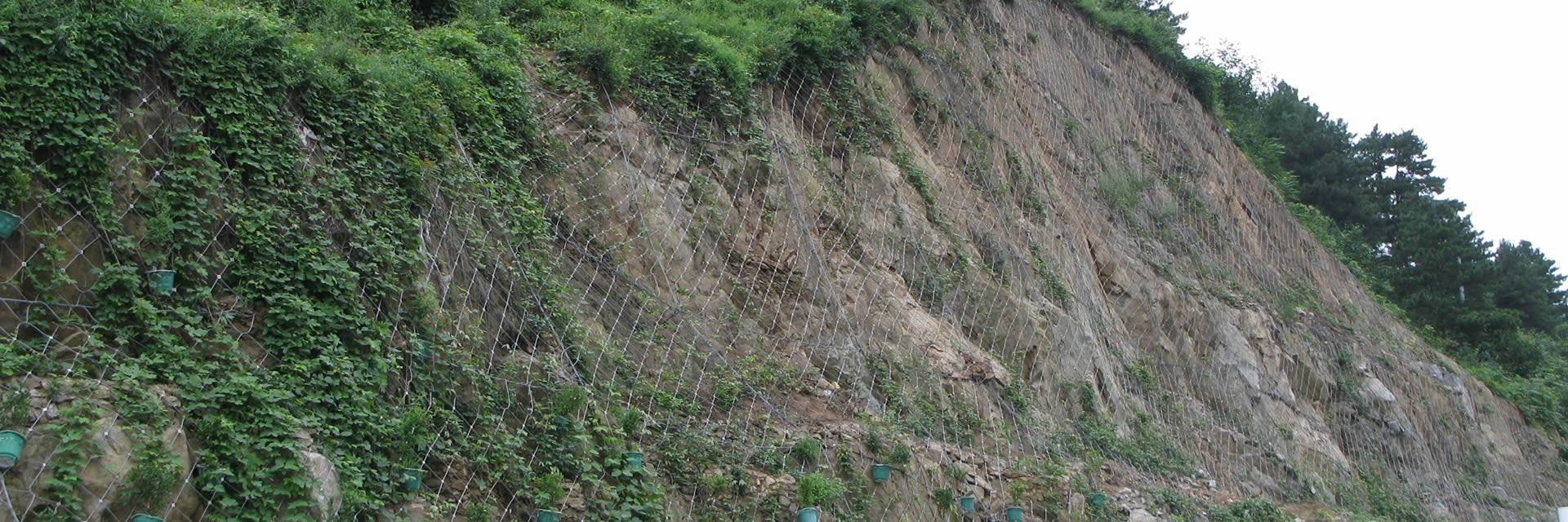 Mountains on the two side of the road are covered by the active rockfall barrier system.