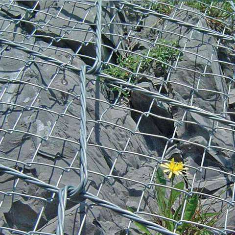 Spider spiral rope mesh is covering the mountain and a flower grow between the gap