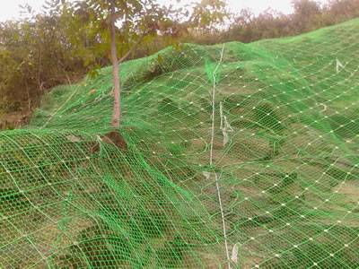 PVC coated steel wire rope net is covering the slope.